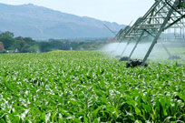 AGRICULTURAL-IRRIGATION-IN-MALELANE-AND-NELSPRUIT-AND-WHITE-RIVER